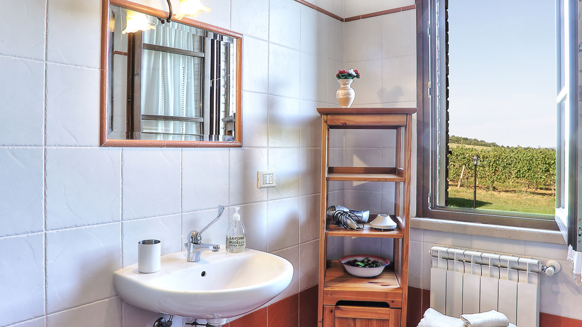 bathroom with sink Le Selvole Farmhouse