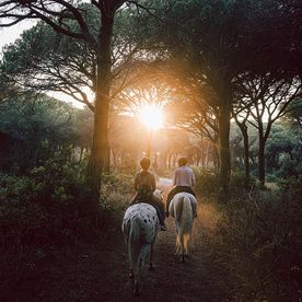two people riding horses through forest at sunset